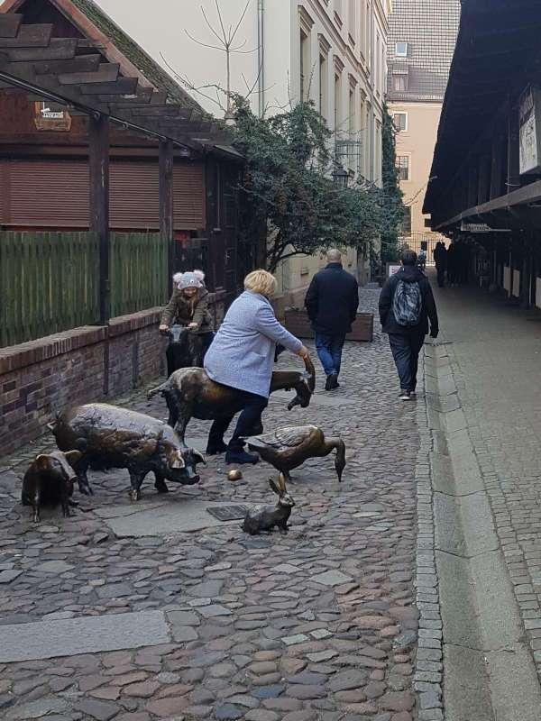 jatki najstarsza ulica we wroclawiu pomnik zwierzat rzeznych galerie na jatkach